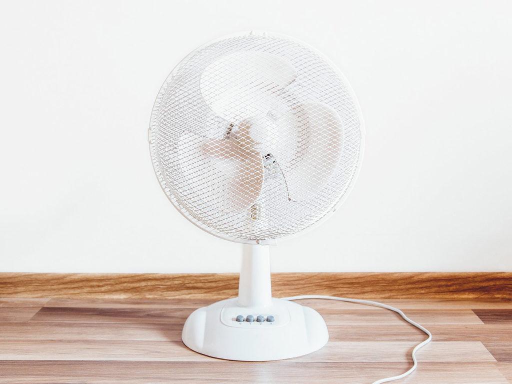 osusume-fan1